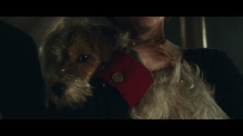 Pedigrees General Howes Dog - Good in War