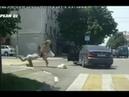 Отчаянная драка 3 х девушек на дороге попала на видео. Рвут волосы!