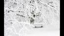 Бард Евгений ИванТей Белый снег февральских кружев