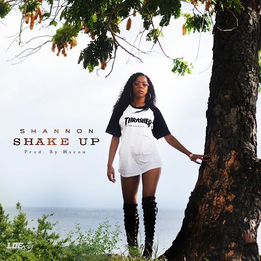 Shannon альбом Shake Up