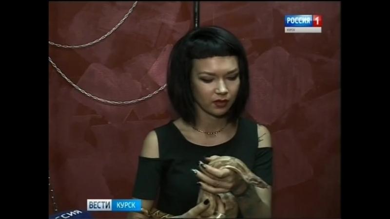 Программа про моих змей на ГТРК КУРСК