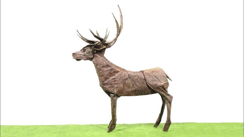 ORIGAMI DEER TIME LAPSE (Satoshi Kamiya) 折り紙 シカ оригами Hirsch ciervo venado