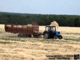 Трактор МТЗ-82.1 с подборщиком ТП-Ф-45 на подборе соломы