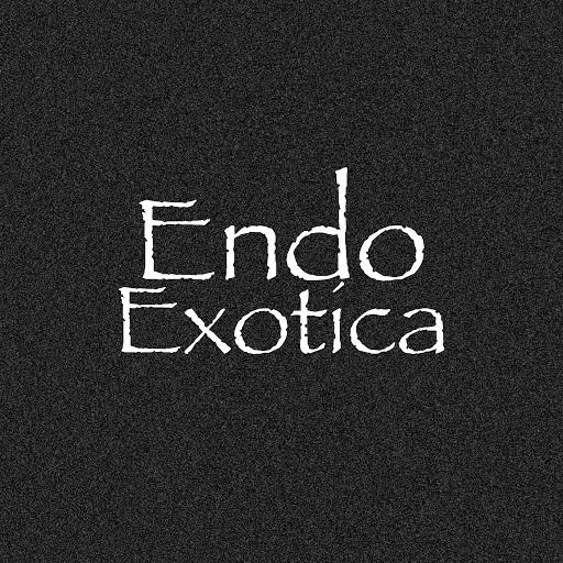 Endo альбом Exotica