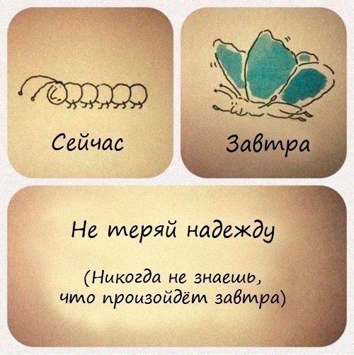http://cs315827.vk.me/v315827072/8ad0/oSf3LqZMRFE.jpg