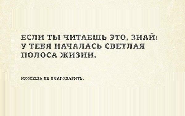 https://pp.vk.me/c7001/v7001544/16435/pU6YTI3MtRY.jpg