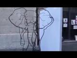 слон или жираф