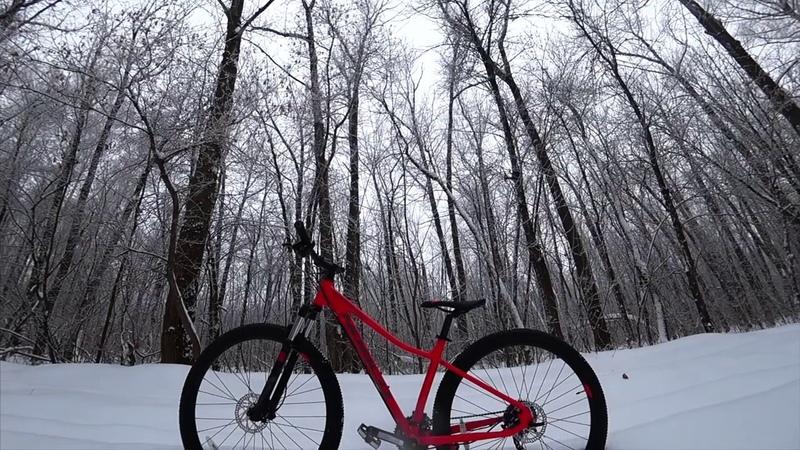 Winter norco v2
