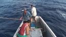 Огромный тунец на бамбуковую палку ! Это вам не плотвичку тягать