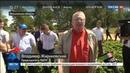 Новости на Россия 24 • Владимир Жириновский поехал собирать клубнику