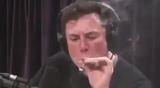 Quantic Musk