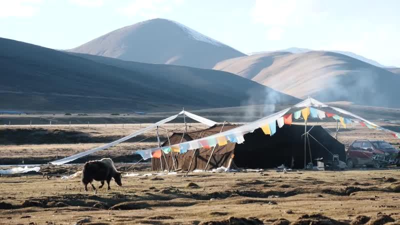 Тибет Люди инопланетяне кочевники автостоп и как я потерялся в степ