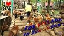 蔵王きつね村 FOX VILLAGE in Zao Japan ! Funny FOX and cute Video Compilation ! SV Life