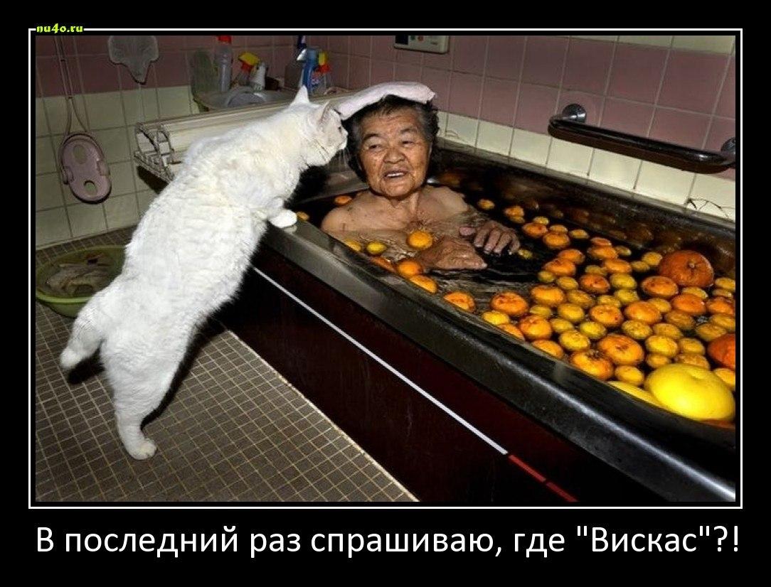 Проблеме советских шеви нива трофи фото комплектация когда царь Шахраман