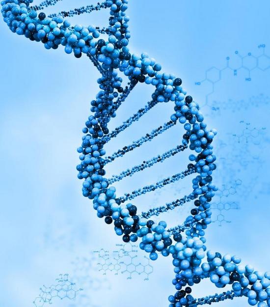 Аденозинтрифосфат - это молекула, из которой состоит ДНК