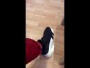 [Sneaker Check] Распаковка Adidas EQT Bask