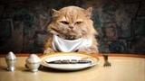 Пищевые аномалии домашних животных (рассказывают Сергей Середа и Ангелина Сиротина)