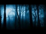 LIVE. застряли в лесу на мото-техники( срочное видео) вдруг что..