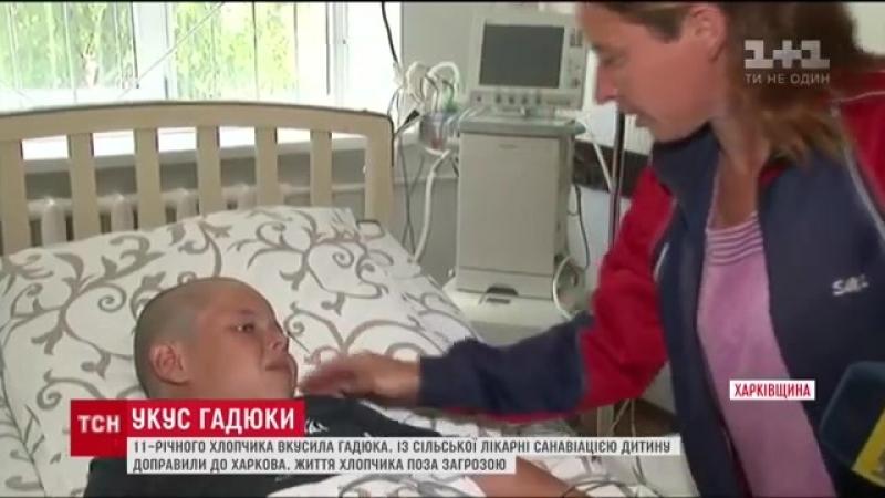 11-річного хлопчика літаком доправили до Харкова, аби врятувати від отрути гадюки