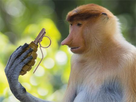 """""""Ми мирні люди"""", або дали мавпі автомат"""