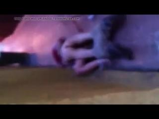 Длинноногая телка отдается парню в переулке