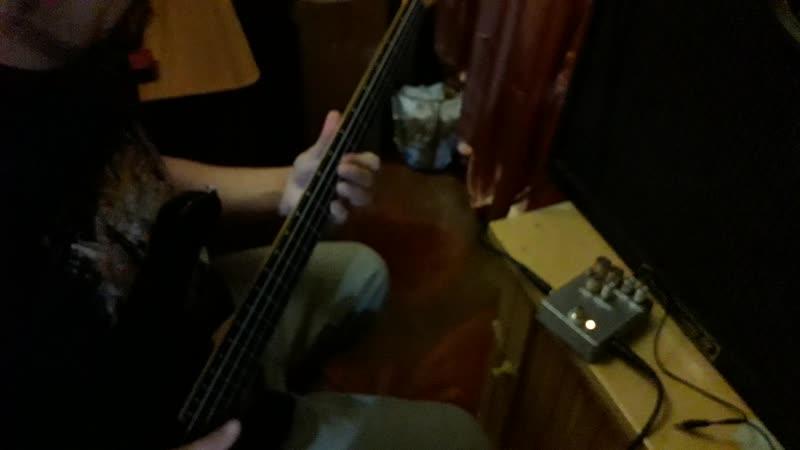 Carvin B4 USATECH 21 SansAmp VT Bass (реплика)