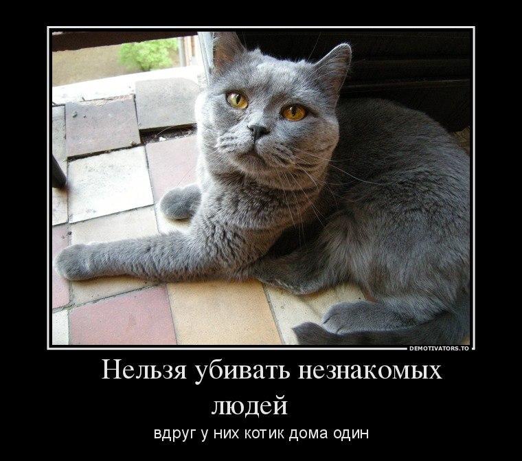 Вас сериал мамочки актерский состав хлопоты отвлекли Владимира
