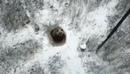 Вести: В Челябинской области медведь впал в спячку прямо в городе