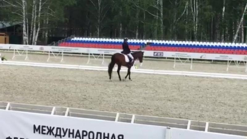 Всеросийские КСК Дубрава троеборье 2018