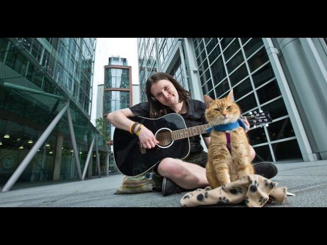 A Street Cat Named Bob 2016 English with Subs