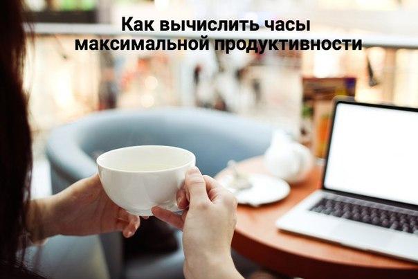 Как вычислить часы максимальной продуктивности лично для себя (экспери