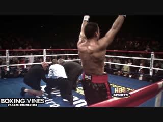 BOXING_VINES ( by kirakosyan ) (Boxing Vines) l