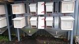 Клетки для кроликов уличного содержания своими руками.... ..., Компостный ящик