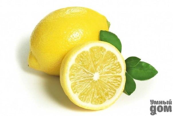 Как избавиться от шума в ушах? От шума в ушах поможет простое народное средство — протирание лимонным соком. Также помогает при головной боли. Смажьте лимонным соком виски, около ушей, сонную артерию. Шум пройдет не сразу, а через некоторое время. Умный дом и все, что в нем...