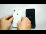 Первый взгляд на iPhone X Plus и 6,1-дюймовый iPhone
