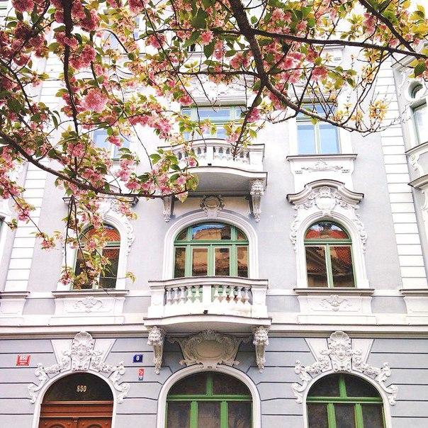 Туры в Прагу на вторые майские на неделю с завтраками от 18700 с человека