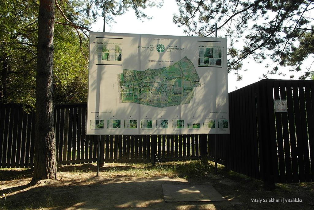 Карта Ботанического сада Алматы 2018