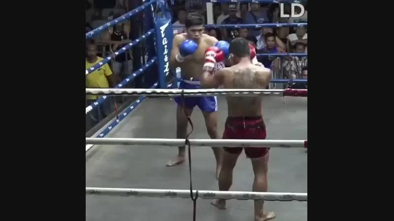 — Он что — тайский боксер У него такой расплющенный нос! — Нет, он моет окна в публичном доме.