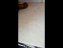 Атырау Ұзақ уақыт сақталған мерзімі өтіп кеткен Шұжық сатылымда