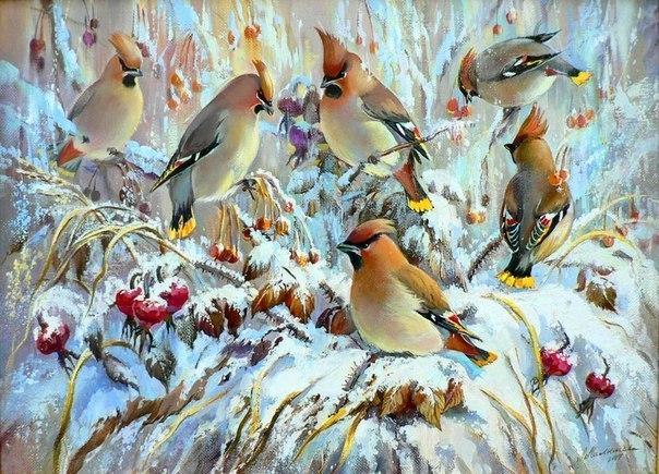 Фото птиц подмосковья.