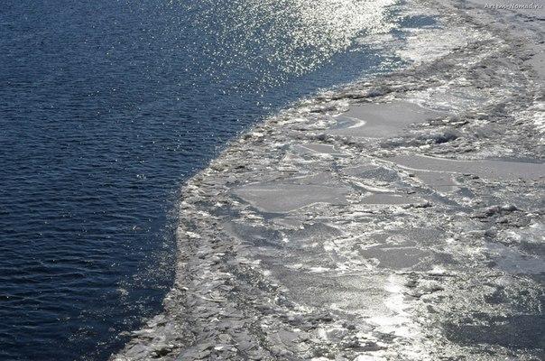 Лёдоход на Волхове