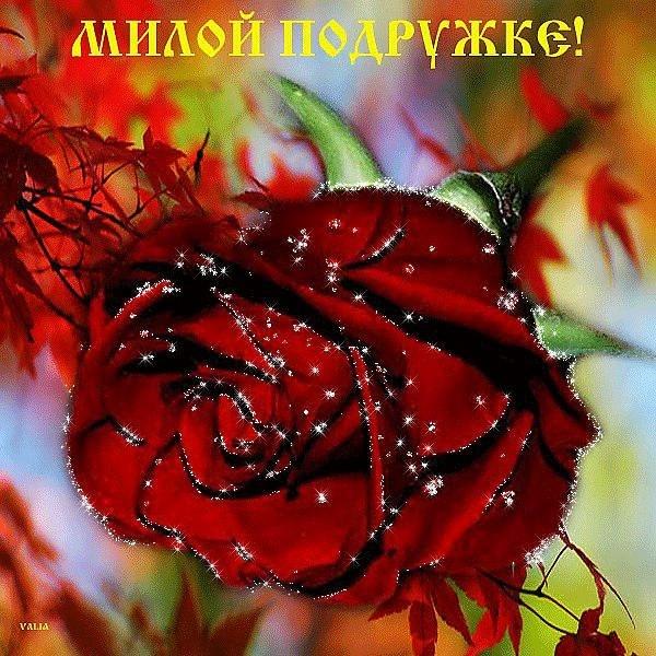 http://cs410227.vk.me/v410227782/38a7/lxcMGJ-Zd-k.jpg