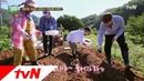 [태웅이의 농사일기] 지렁이를 활용한 친환경 배추심기 -지렁이 뿌리기 풀 뜯5