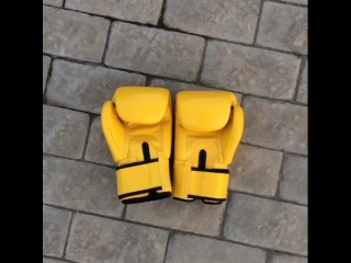 FAIRTEX BGV1 YELLOW GENUINE LEATHER