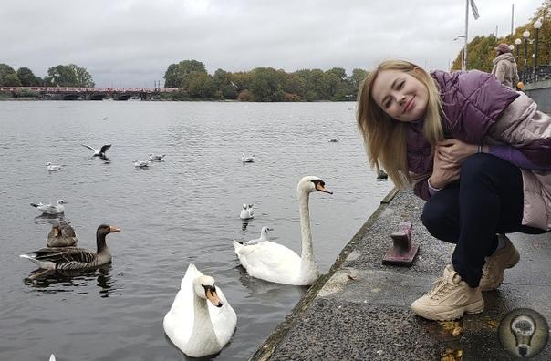 ПЯТЬ ФАКТОВ О ГАМБУРГЕ Передача «Один день в городе» побывала в Гамбурге. Зоя Бербер делится любопытными фактами и некоторыми маршрутами. Один из символов Гамбурга лебеди Эти птицы даже