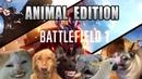 Battlefield 1 trailer but it's sounds like animals