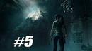 ДРЕВНИЙ ХРАМ С РЕБУСАМИ И ПЕРЕСТРЕЛКАМИ ► Shadow of the Tomb Raider ► 5