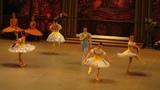 La Esmeralda(2) Xenia Ovchinnikova, Sergey Gagen Samara Ballet
