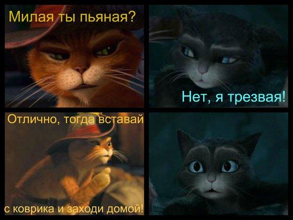 Порно фото кот в сапогах
