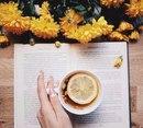 10 книг, которые нужно читать, когда тебе плохо